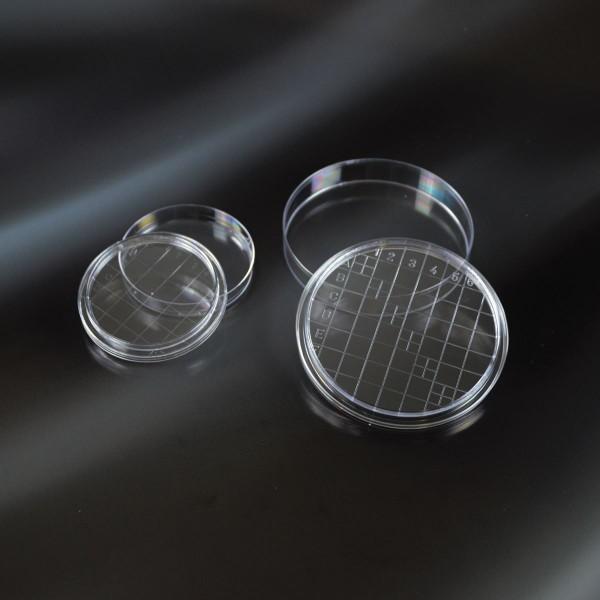 Petrischale Ø 55 mm mit Nocken+Raster, steril
